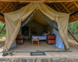 HONEYMOON TENT (1)